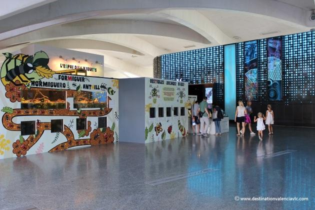 activities-1-museo-ciencias-principe-felipe-city-of-arts-and-sciences-valencia