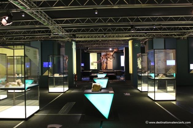 activities-3-museo-ciencias-principe-felipe-city-of-arts-and-sciences-valencia