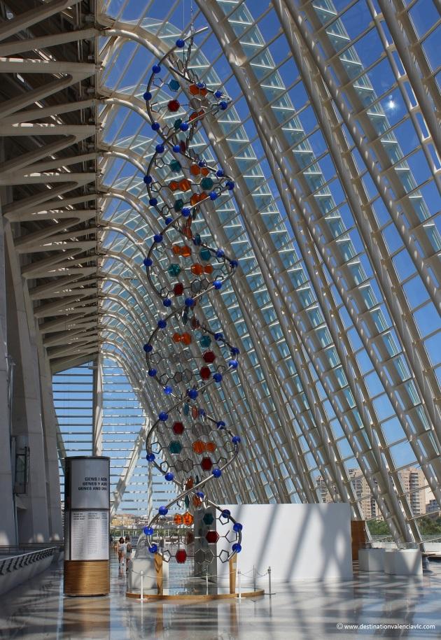 adn-2-museo-ciencias-principe-felipe-city-of-arts-and-sciences-valencia