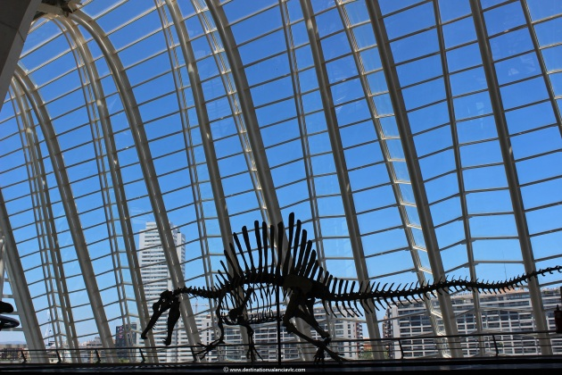 expo-dinosaurios-museo-ciencias-principe-felipe-city-of-arts-and-sciences-valencia