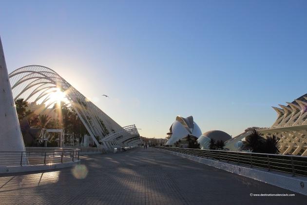vistas-ciudad-artes-ciencias-desde-jardin-astronomia