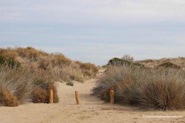 acceso-playa-el-saler-parque-natural-albufera-valencia