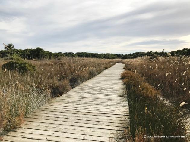 sendero-madera-parque-natural-albufera-devesa-el-saler-valencia
