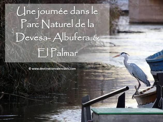 fr.Portada-un-dia-parque-natural-devesa-albufera