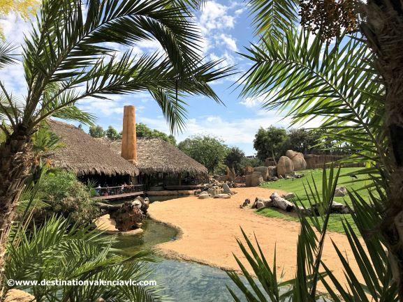 zona-sabana-restaurante-bioparc-valencia-copyright www.destinationvalenciavlc.com